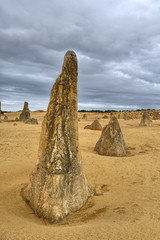 Pinnacle in the Nambung desert.