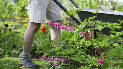 Gartenarbeit mit der Schubkarre