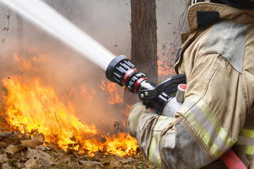firefighters spray water to bushfire