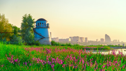 Old lighthouse and a field with flowering sage on the background