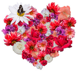 Beautiful heart made of different flowers
