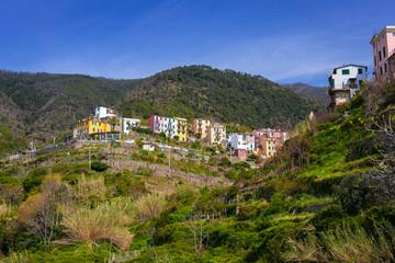Green hills of Cinque Terre National Park, Corniglia in Italy