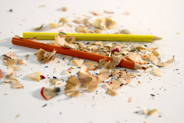 Pencil and Shavings, colored pencil