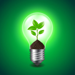 Growing sprout inside the light bulb vector
