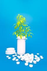 Pflanzliche Medizin - Baum wächst aus Pillen