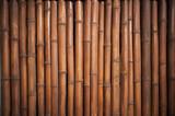 Fototapety Bamboo background