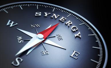 Kompass - Synergy