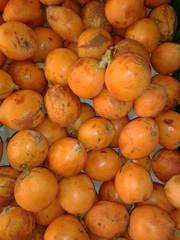 Níspero mispel fruta