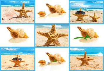 Spa concept with seashells, set