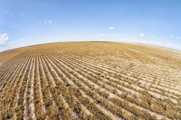 plowed field in fish eye perspective