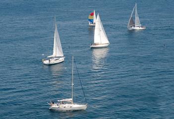 Regata velica nel Mar Ligure