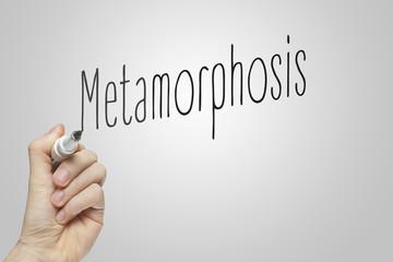 Hand writing metamorphosis