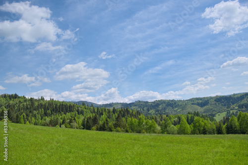 Landscape with mountain in background.