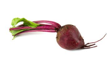 beet isolated