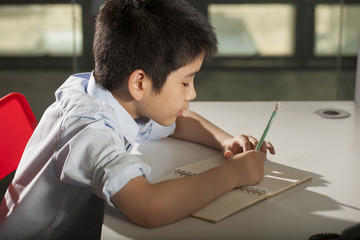 kid life, an Asian boy activity playing game, do homework