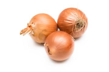 Tre cipolle comuni su sfondo bianco