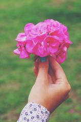 Woman holding pink hydrangea flower bouquet in her hand