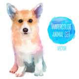 Fototapety Vector set of watercolor illustrations. Cute dog