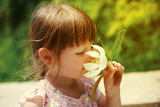 Portrait of little beautiful girl is smelling flower
