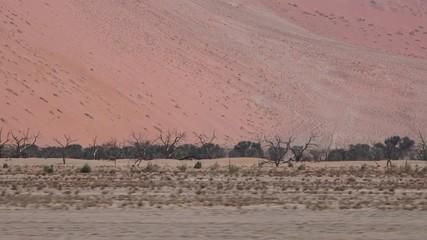 The Namib Dessert (Sossusvlei, Namibia) as 4K footage
