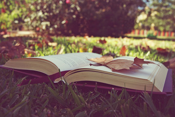 Book on grass with leaves