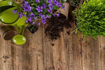 Outdoor gardening tools and herbs