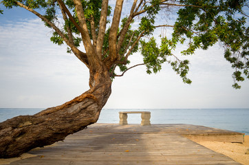 Jamaica, Tree and bench by Caribbean Sea
