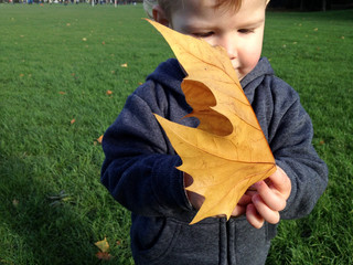 UK, Young Boy With Large Leaf