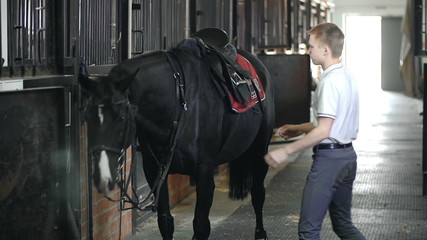 Offsaddling the Horse