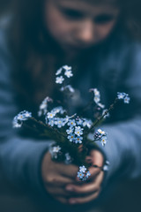 Norway, Girl (8-9) holding bouquet of forget-me-not flowers