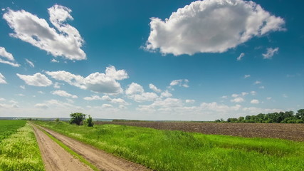 dirt road through the field, green grass, clouds