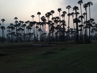 India, Andhra Pradesh, Sunset