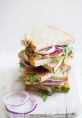 Studio shot of fresh sandwich with Parma ham and rucola