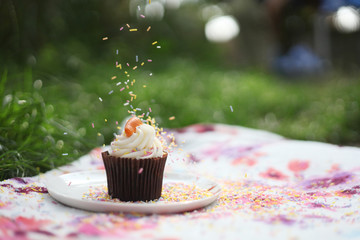 UK, Sprinkling of sprinkles onto cupcake at picnic