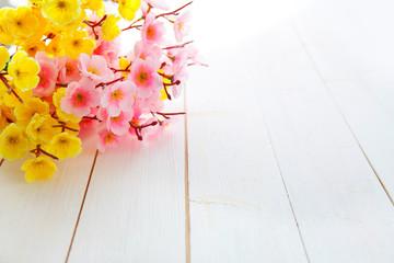 Spring Blossom over wood background.