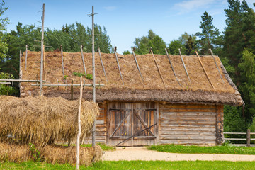 Outdoor hay drying near old wooden barn