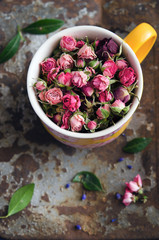 Dry pink roses