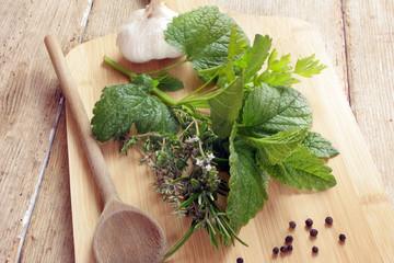 herbes aromatiques 18052015