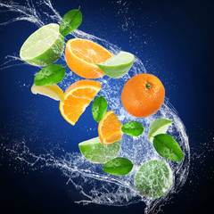 Fresh citruses with water splash