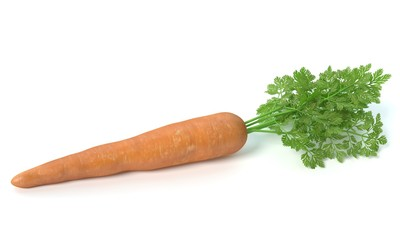 3d illustration of a carrot