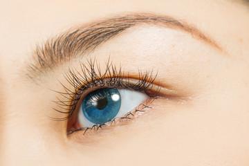 アジア人 つけまつげとカラーコンタクトレンズ Eyes of the Asian woman