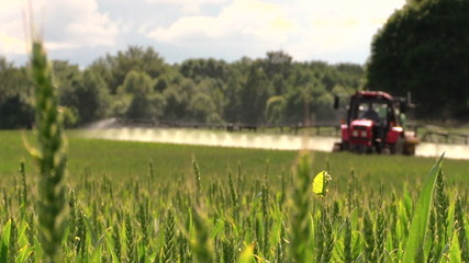 Farmer with tractor spray fertilize field with chemicals