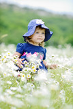 toddler girl in daisy field