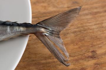 Atlantic Mackerel close up of tail on white plate