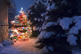 Fototapety Heavy snow falls quietly on this magical Christmas Tree scene.