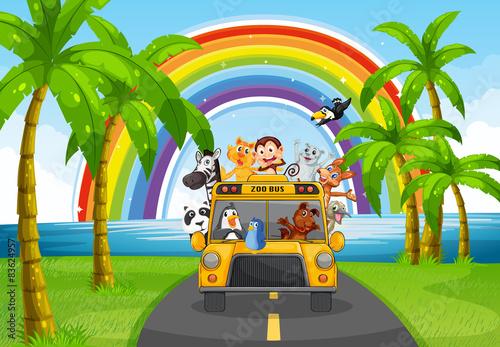 Plexiglas Zoo Animal and bus
