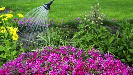 Wasser für die Pflanzen
