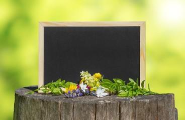 Tafel in Natur