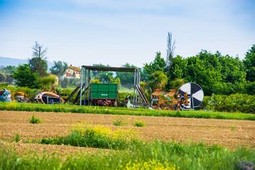 Fattoria, azienda agricola, Paesaggio di campagna Toscana