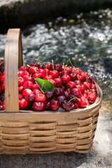 Cherries from Valle del Jerte in Spain.